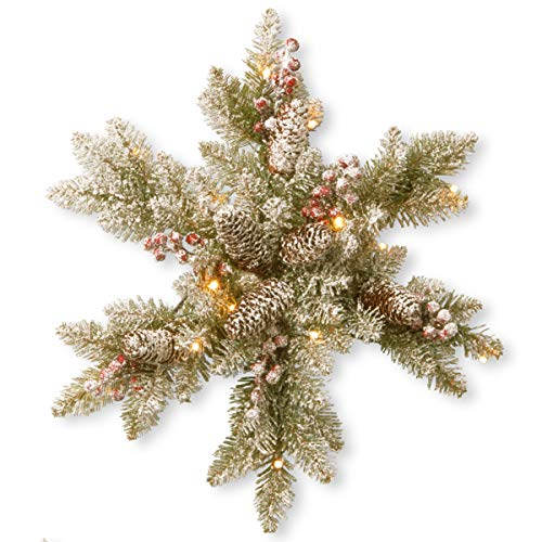 National Tree 18 Inch Dunhill Fir Snowy Snowflake with Cones, Red Berries and 15 Warm White Battery Operated LED Lights with Timer (DUF-300L-18SB-1)