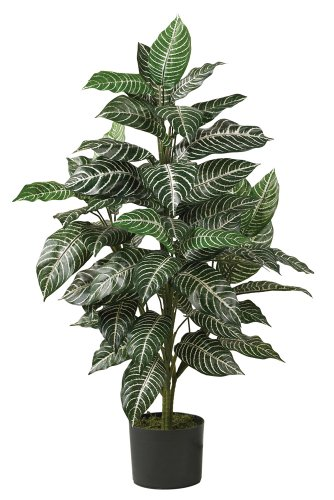Nearly Natural 6542 Zebra-Pflanze aus Seide, 91 cm, Grün