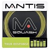 Tour Response 17Lg String Set 10m NaturalP_ -