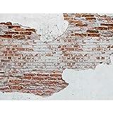 Fototapeten Steinwand 352 x 250 cm Vlies Wand Tapete Wohnzimmer Schlafzimmer Büro Flur Dekoration Wandbilder XXL Moderne Wanddeko - 100% MADE IN GERMANY Runa Tapeten 9083011a