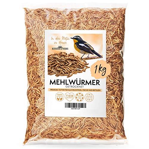 Blossom&Thorn Mehlwürmer getrocknet 1kg │ Protein Snack für Vögel, Fische, Reptilien u.v.m.