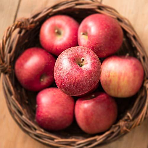 うめ海鮮 国産 特選 サンふじりんご 5kg 糖度センサー選別(旬の産地より)