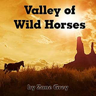 Valley of Wild Horses cover art