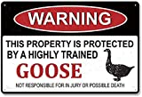 YYone Art - Cartel de metal de chapa con texto en inglés 'Warning This Property is Protected by A Highly Trained Goose Not Responsible for Injury or Death', 30 x 19,8 cm, texto en inglés 'Caution'