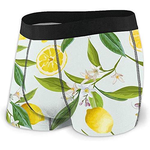 Web--ster Boxer Respirant avec sous-vêtement pour Hommes, Ceinture de Fruits exposés au Citron et à la Taille