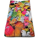 Toallas de Mano Colorful Parrot Toallas de Secado rápido Altamente absorbentes para Hand Face Gym and SPA 30 * 70Cm
