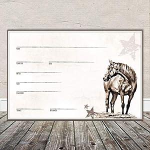 Boxenschild Stallschild Stalltafel Namensschild Pferd 'Western, Quarter Horse' 20x30cm Alu