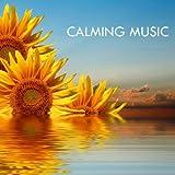 Love - Hindi Song Soothing Music