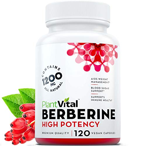 Berberine Weight Loss Boosts Immune System Blood Sugar Stabilizer Glucose Metabolism Cardiovascular PCOS - 120 Count (Pack of 1)