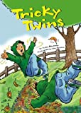 Tricky Twins (Read-It! Readers) (English Edition)