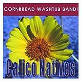 Calico Natives Banjo Medley