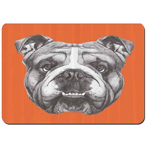 Alfombrillas de baño Antideslizantes, Retrato Dibujado a Mano de Cachorro de Bulldog Inglés Retro Animal Divertido y Fresco Mascota, Alfombra de Entrada de Ducha Alfombra para Mascotas 50x80cm