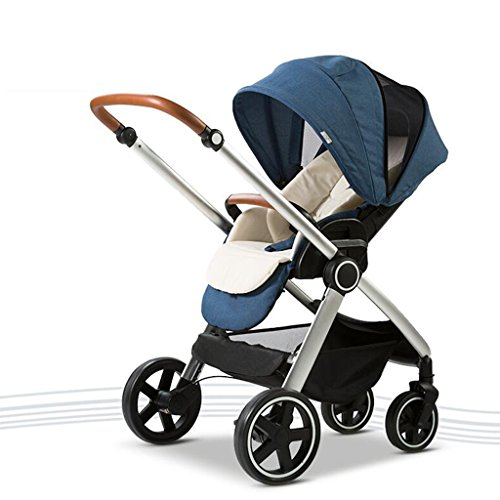 Great Deal! PLDDY Standard Baby Carriage High Landscape Can Sit Horizontal Portable Folding Two-Way ...