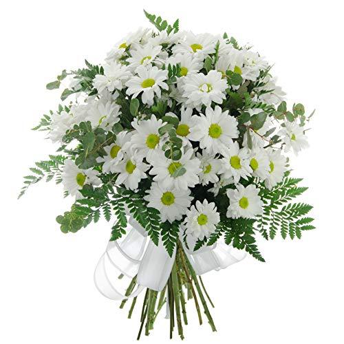 Ramo de margaritas blancas ideal para regalar a un amigo en su cumpleaños o en una fecha especial. Personaliza tu regalo con una dedicatoria (gratuito). * Incluye sobre de conservante para prolongar la vida de las flores. Envio premium en España Peni...