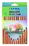 Lyra Waldorf Selection - Super Ferby Triangular Jumbo Colouring Pencils - Natural Wood
