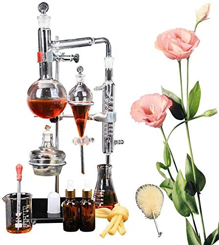 LXNQG Home DIY Destilador De Agua Pura De Aceite Esencial con Botella De Separación Termómetro De Bomba De Agua, Kit De Herramientas De Vidrio Químico De Laboratorio Profesional