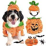 Legendog Costumi Halloween Cani,Vestiti Cani Halloween | Costumi per Cani Halloween | Zucca Abito Halloween per Cani, Respirabile, Regolabile