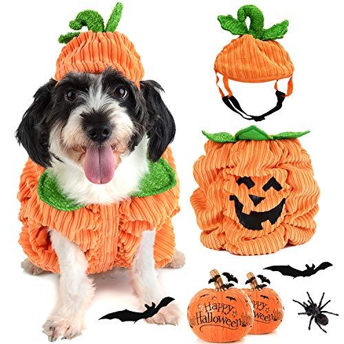 Legendog Costume Halloween Chien, Deguisement Chien Halloween | Costume Chien Halloween | Citrouille Costume Halloween pour Chien