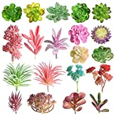 FEPITO Random 20 pcs Suculentas Artificiales Uncheted Echeveria Selecciones Suculentas Plantas...