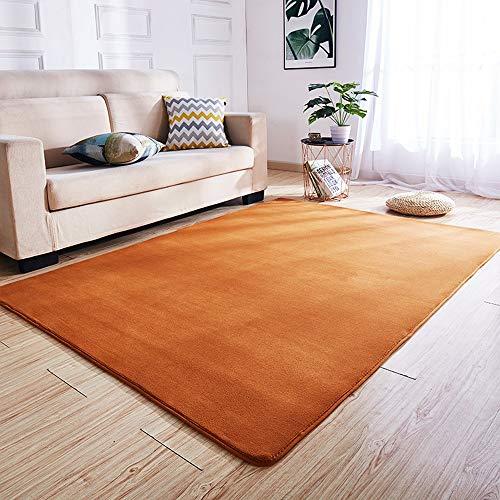 Zhao Li vloerbedekking Coral fleece deken zacht en comfortabel voor woonkamer slaapkamer kantoor grote duurzaam licht te zuivere ruimte corner tapijt, salontafel tafel en stoelpads tapijten