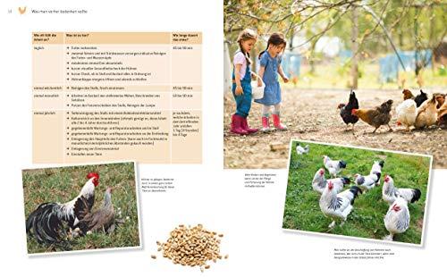 Das große Buch der Hühnerhaltung im eigenen Garten: Pflege, Haltung, Rassen - 2