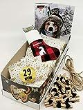 Qchefs Hunde Adventskalender 2020|Ihr Hund öffnet selbst das Türchen| Hundeleckerlie glutenfrei| Zahnpflege-Snack| Mundgeruch Weg| Für Barf& Allergiker| Kleine & Große | Natur pur& Hüttenkäse