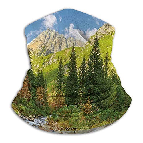 Outdoor,Roztoka Stream Tatra National Park Carpathian Mountains Poland Woods,Green Green Tan Women Men Headband,Winter Neck Warmer,Motorcycle Face Scarf,Tube Headwear,Unisex Bandana,Neck Gaiter