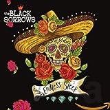 Songtexte von The Black Sorrows - Endless Sleep XL