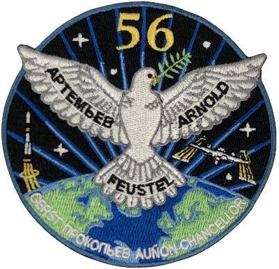 ISS 56. Ausseneinsatz (mit Alexander Gerst) Raumfahrt Aufnäher