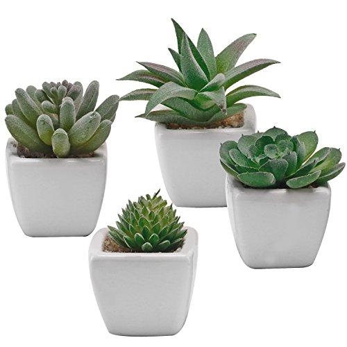 Ensemble de 4 fausses plantes miniatures