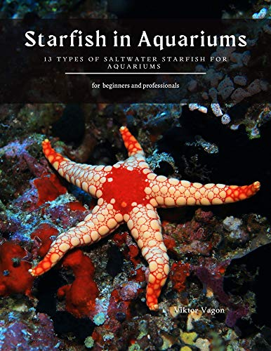 Starfish in Aquariums: 13 Types of Saltwater Starfish for Aquariums (English Edition)