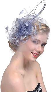 YiyiLai Veil Tea Party Derby Hat Fascinator with Clip and Hairband Headdress