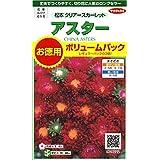 サカタのタネ 実咲花9022 アスター 松本クリアースカーレット 徳用袋 00909022