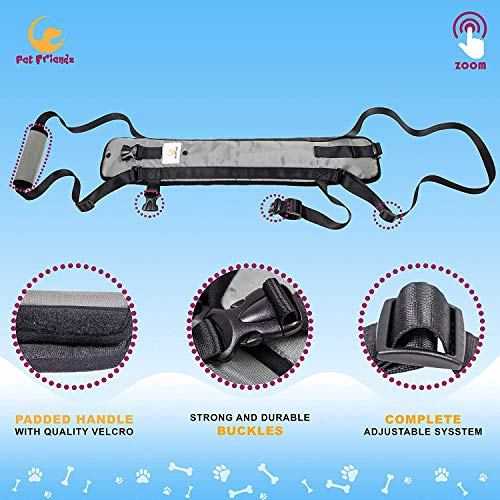 Veterinarian Approved Dog Support Harness + Hair Remover Glove - Dogs Sling Lift for Paralyzed Legs - Adjustable Straps - Mobility Rehabilitation for Injured Arthritis Elderly Disabled - Small Breed