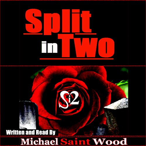 Split in Two audiobook cover art