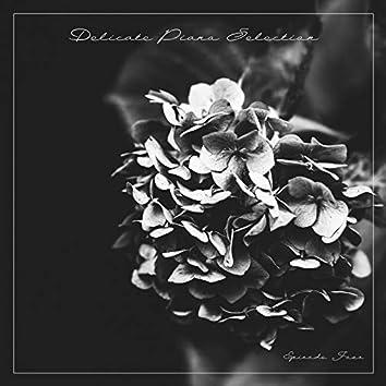 Delicate Piano Selection, Episode Four