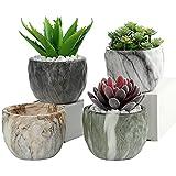 Fippy 4PCS Vasi per Piante Grasse, Vaso Bonsai Ceramica, Vaso da Fiori Marmorizzato, Vaso per Bonsai Ceramica per Decorazione casa e Ufficio