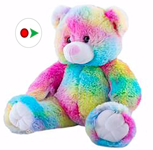 Personalized Recordable 15 Inch Talking Teddy Bear w/ 20 Seconds of Recording Time.