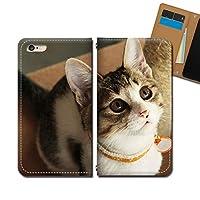 AQUOS R6 A101SH ケース スマホケース 手帳型 ベルトなし 猫 ネコ ねこ 動物 アニマル 手帳ケース カバー バンドなし マグネット式 バンドレス EB293010118401