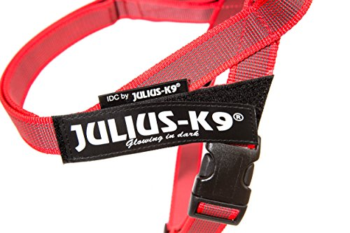 Julius-K9 Color & Gray Arnés De Correa De IDC, Tamaño Mini, Rojo ...