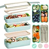 Edtsy Bento box for kids and adults with Dividers 1100 ml - Leakproof lunchbox with utensils - Lunch Solution Offers Durable, Leak-Proof, On-the-Go Meal and Snack Packing