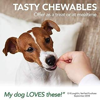 عروض أفضل الفيتامينات والأكسيجين الحرة الكلب البيطري الأسبرين