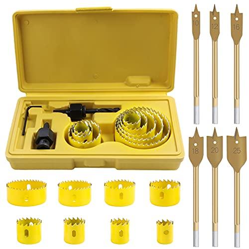 SHEENO Kit de 17 piezas de corte de sierra perforadora de acero al carbono para madera, placas de yeso, plástico y metales no ferrosos con caja de almacenamiento (19 mm-64 mm)