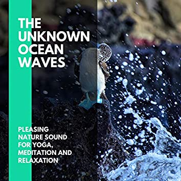 The Unknown Ocean Waves - Pleasing Nature Sound for Yoga, Meditation and Relaxation