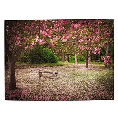 Rompecabezas de 500 Piezas,Banco de jardín Tranquilo con árboles de cerezos en Flor como telón de Rompecabezas de imágenes para niños,Adolescentes,Adultos,Divertido Juego de Alivio del estrés