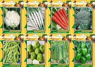Amazon.es: semillas de zanahoria
