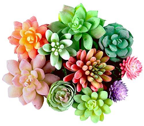 Dandevo 10 Pcs Unpotted Fake Succulent Flowers Plant Assorted Colorful Artificial Succulents Picks in Bulk Realistic Plastic Faux Silk Stems for Bouquet Terrarium Home Decor Large and Small