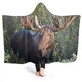 AEMAPE Bull Moose Manta con Capucha de Madera con patrón Vintage Serape Bata con Capucha antiestática Mantas térmicas para Dormir para sofá Cama Sofá 80 'x 60'
