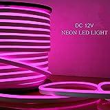 Luz LED neón cuerda, 10M, rosa Luz tira flexible LED,...