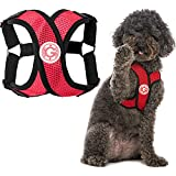 Gooby Comfort X Step in Harness - Red, Large - Comfort X Step-in Small Dog Harness Patented Choke-Free X Frame - On The Go Dog Harness for Medium Dogs No Pull or Small Dogs for Indoor and Outdoor Use